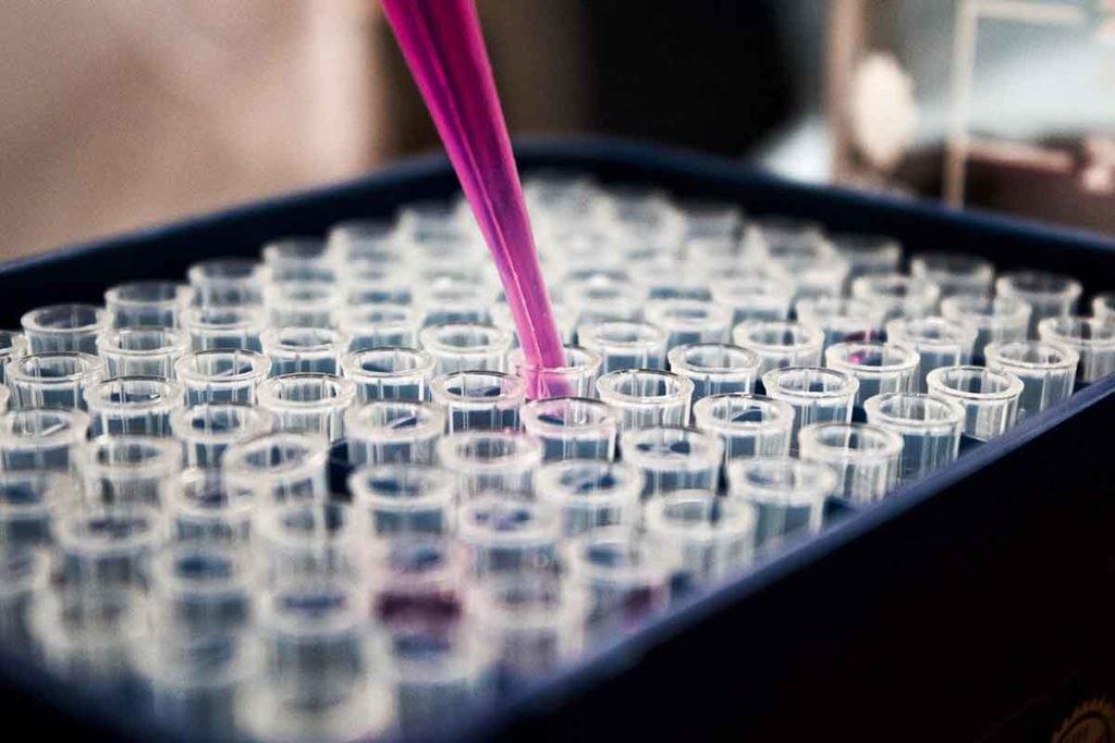 En la actualidad, Álvaro Gutiérrez-Uzquiza trabaja investigando sistemas CRISPR.