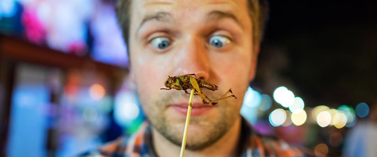 insectos precios injustificados