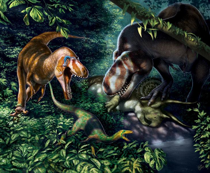 Recreación de Tyrannosaurus Rex adolescentes.