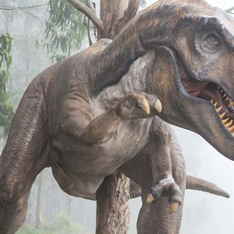 Los fósiles de dos Tyrannosaurus rex adolescentes permiten analizar cómo crecían.