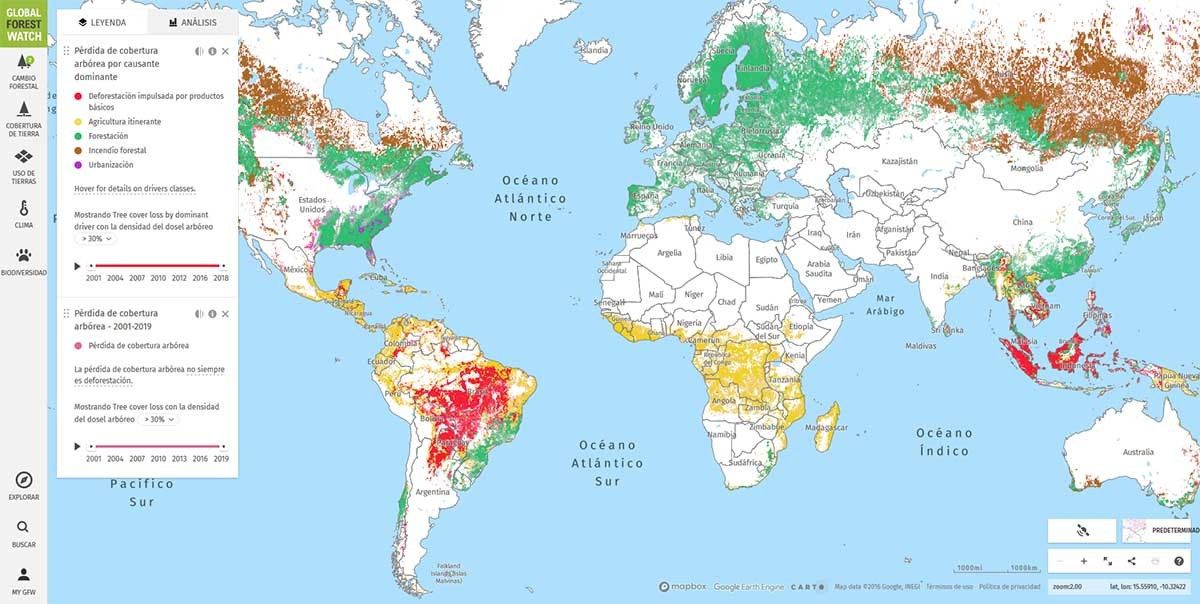 cómo usar Global Forest Watch