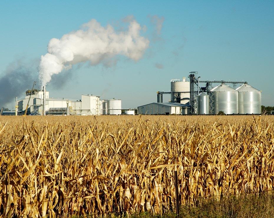 campo de cultivo para la producción de etanol junto a planta química