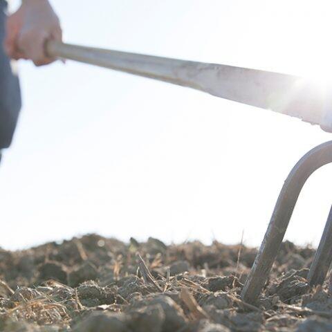 herramienta para remover tierra