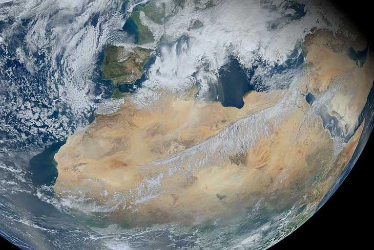 Los árboles del Sáhara no se percibían en imágenes satelitales.