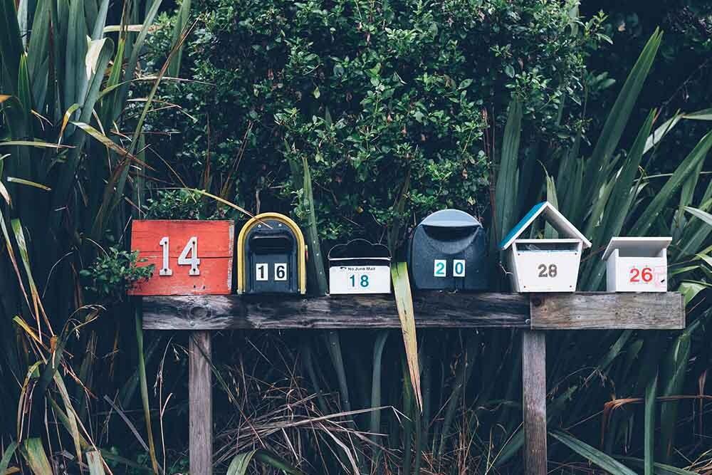 el boom de las newsletters