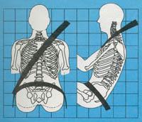 Cinturon de seguridad y cuerpo