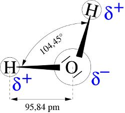 Esquema de la estructura de la molécula de agua