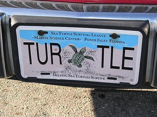 Matrícula alusiva a la tortuga