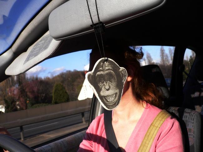 Mono al volante