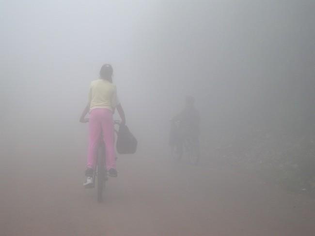 Conducir con niebla