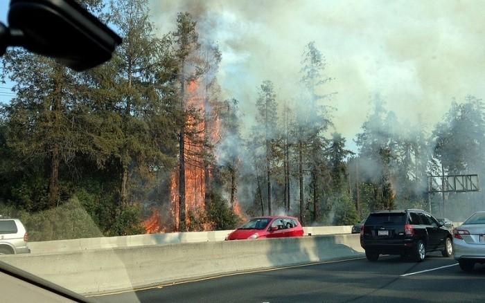 Incendio cerca de la carretera