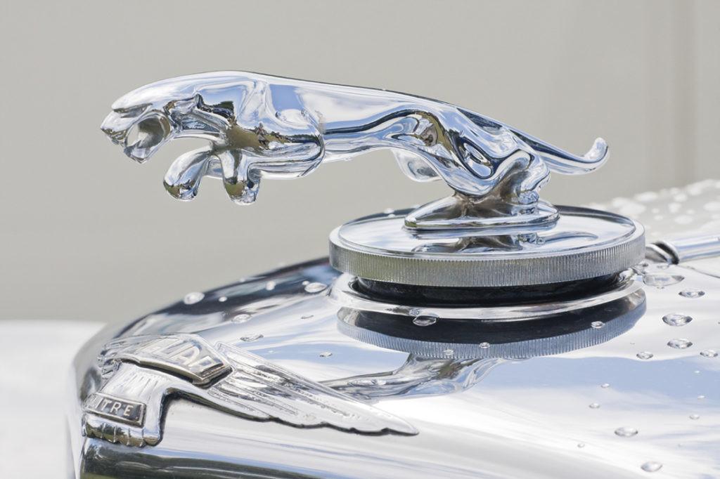 insignia-jaguar