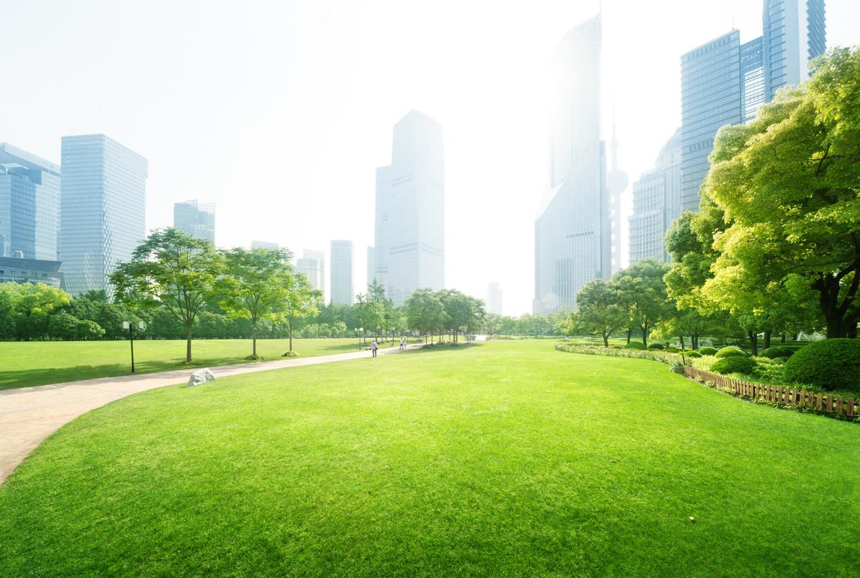 parque en ciudad