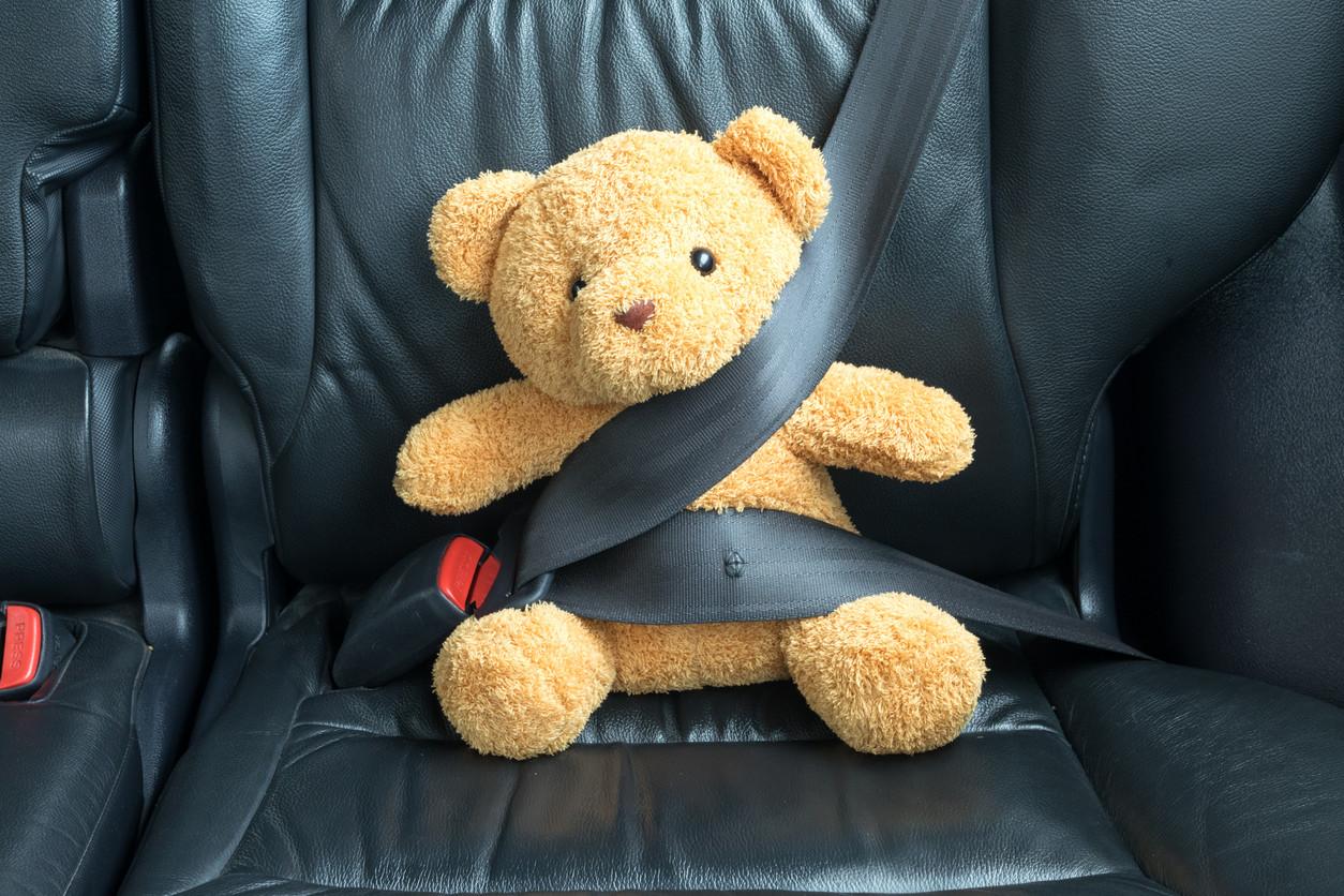 osito de peluche con cinturón de seguridad