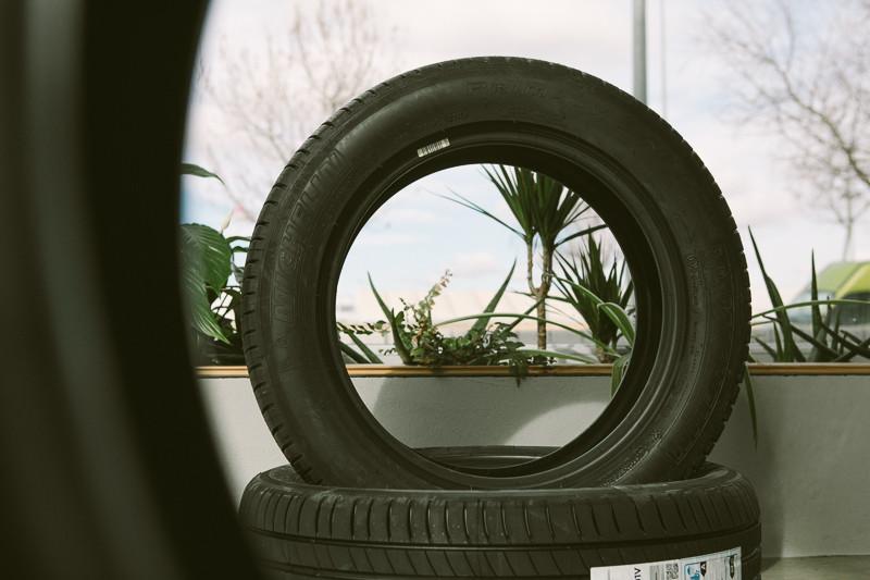 rueda y planta