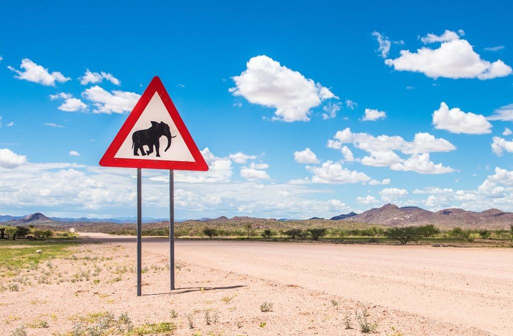 Seguridad vial paises desarrollo