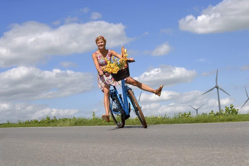 ventas de bicicletas eléctricas