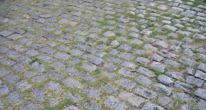 empedrado ervas