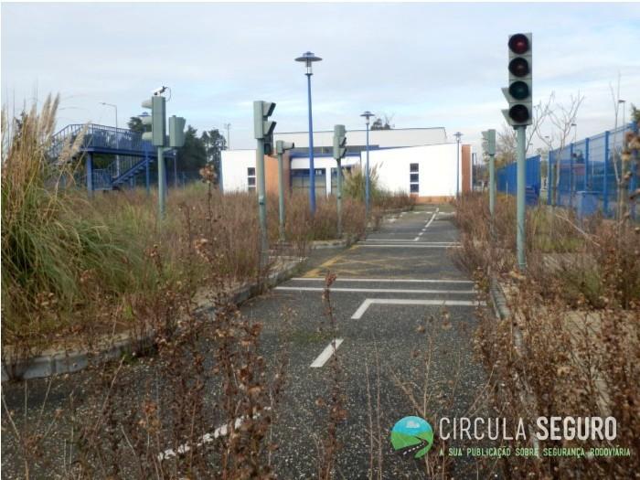 O papel das autarquias na segurança rodoviária infantil