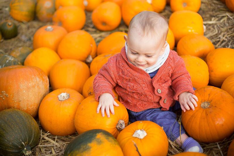 frutas hortalizas bebé otoño