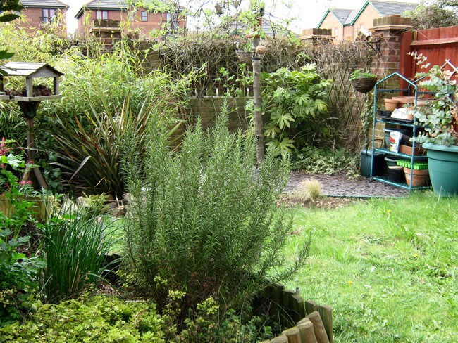 Ahorrar en el jardín 4