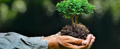 https://img.blogs.es/ennaranja/wp-content/uploads/2017/01/sostenibilidad-390x160.png