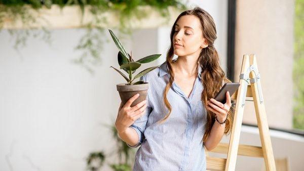 Tecnología en el jardín