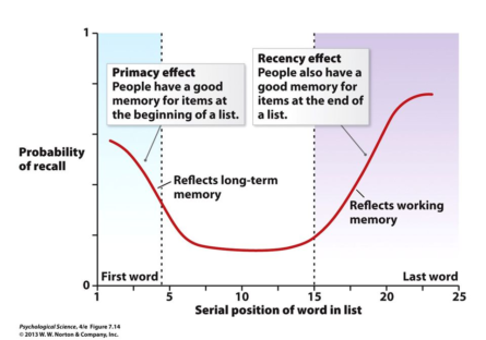 Efecto primacia y efecto reciente