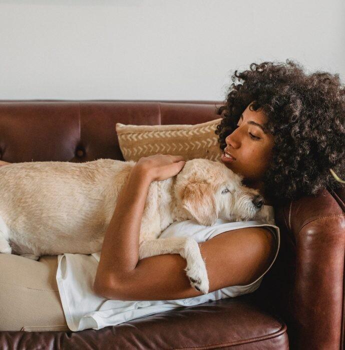 los perros huelen el embarazo