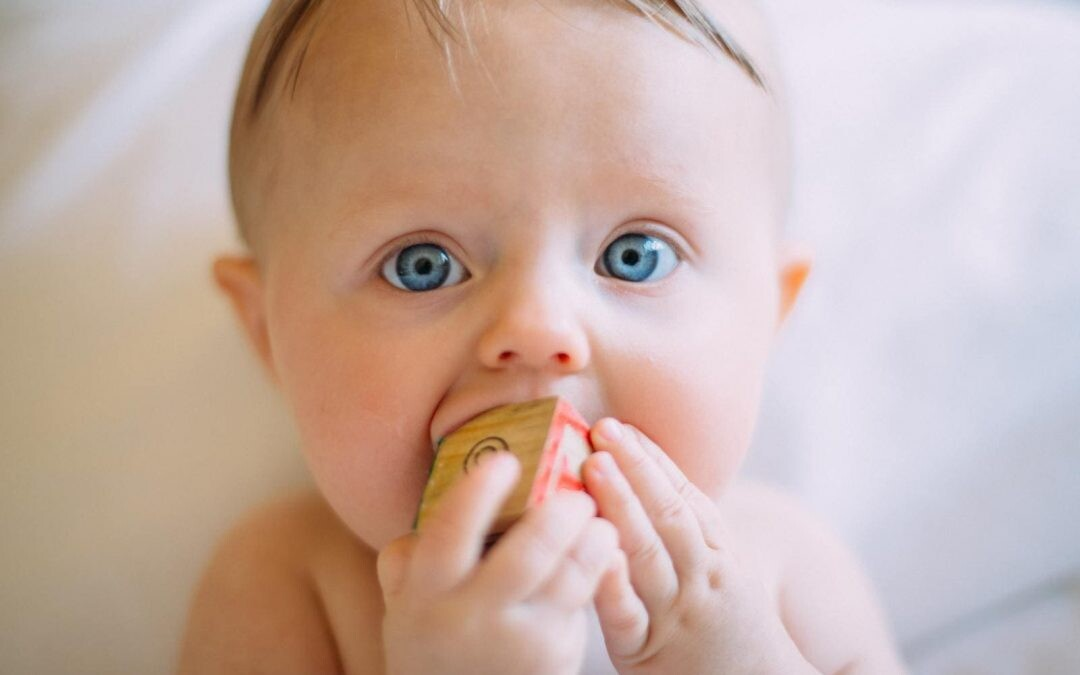 primer diente oddent baby