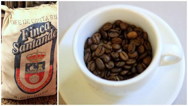 proceso-cafe-taza