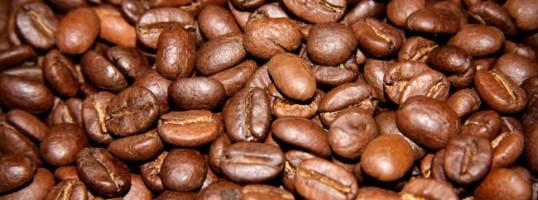 13 hechos sobre el café Granos de café