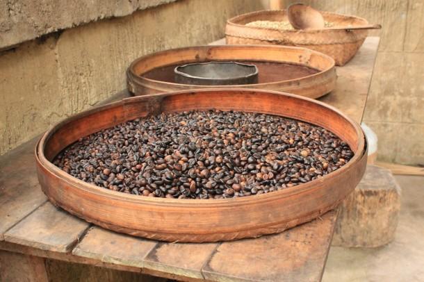 Granos de café foto Paco Becerro
