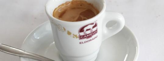degustar café claves para hacerlo como un experto