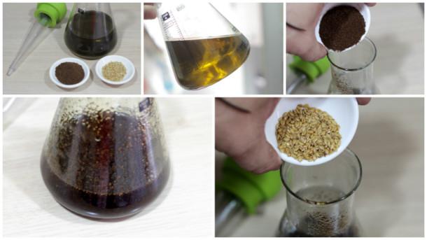 aceite de cafe pasos