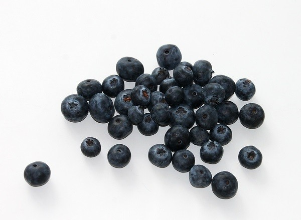 blueberry-625265_1280