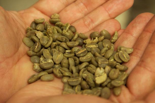 café verde y gastronomía