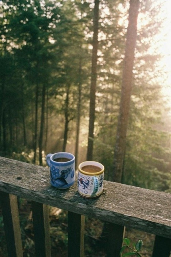 cafe (6)