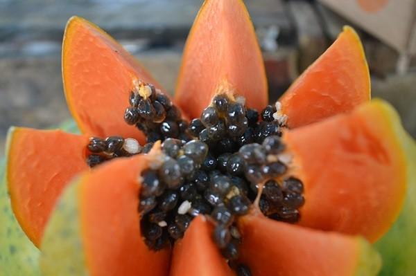 fruta verano (2)