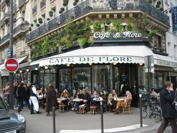 viaje cafe (4)