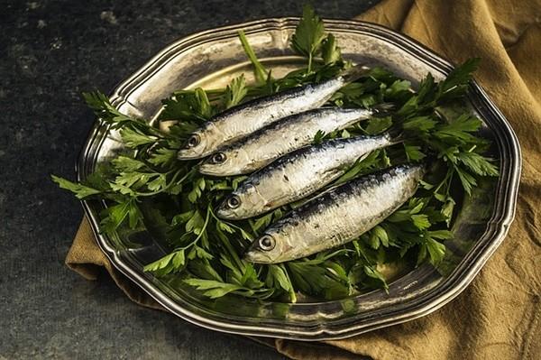 sardines-1468422_640