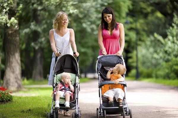 grupos-madres