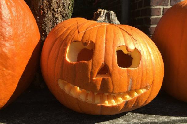 halloween calabaza