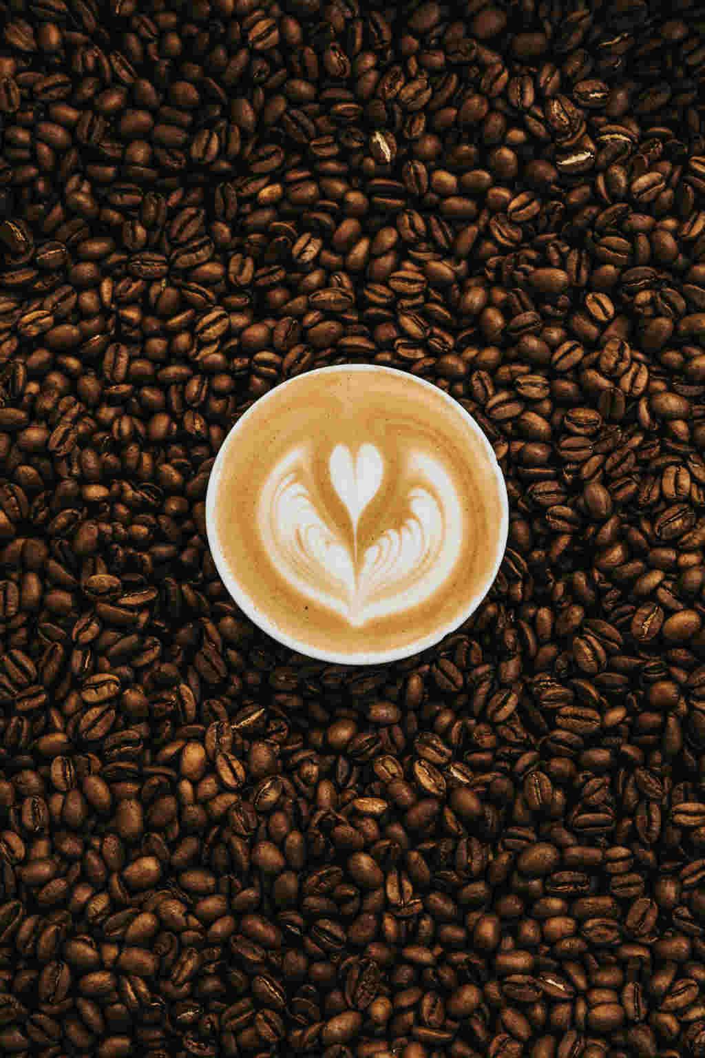 moler cafe en casa