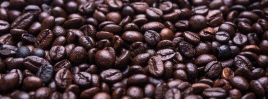 Granos de café arábica