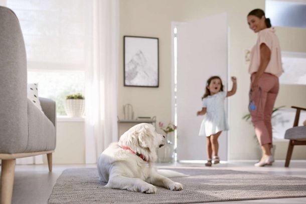 Limpieza con mascotas