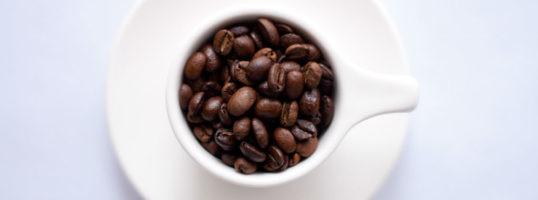 tipos de granos de cafe