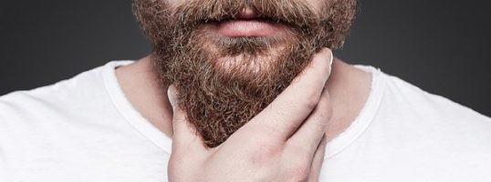barba picor