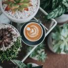 cafe en Instagram