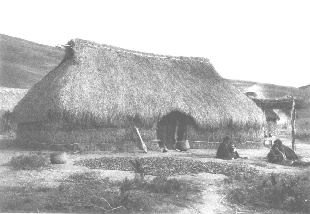 ruca mapuche vivienda